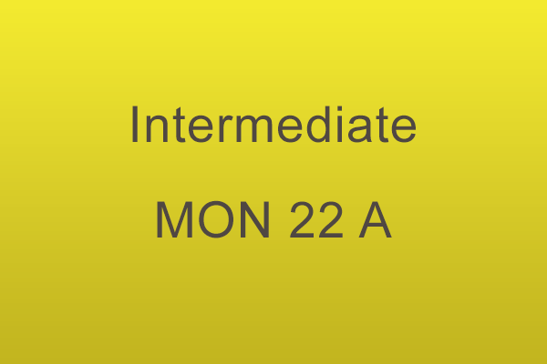 Intermediate Workshop Mon 22 A