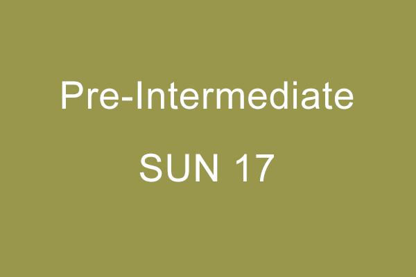 Pre-Intermediate Workshop Sun 17 A