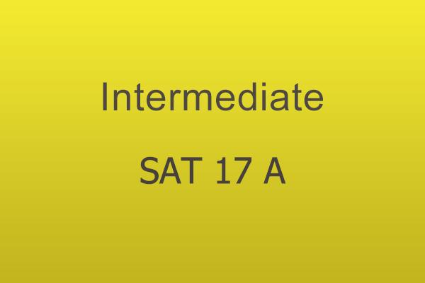 Intermediate Workshop Sat 17 A